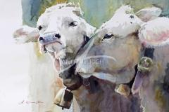 Jugendliebe, Kühe