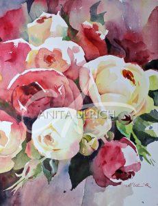 Rote und weisse Rosen