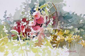 Stockrosen in Anitas Garten